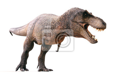 Bild 3d Tyrannosaurus rex render on white background