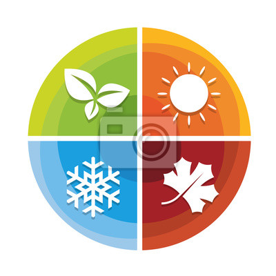 Bild 4 season icon in circle diagram chart  with leaf spring  , sun summer , snow winter and Maple leaf autumn vector design