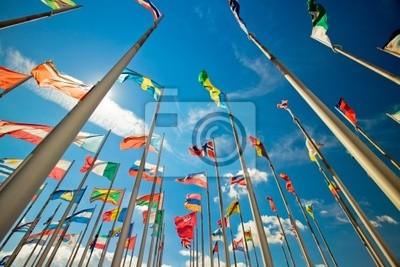 Bild 8 internationale
