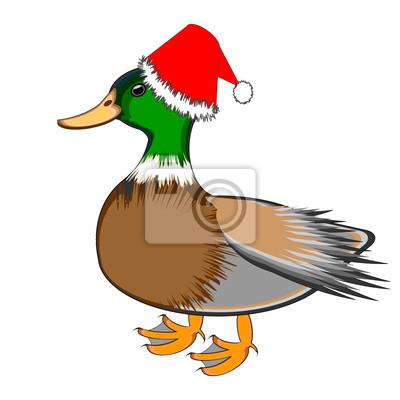 A Christmas Ente auf einem weißen Hintergrund