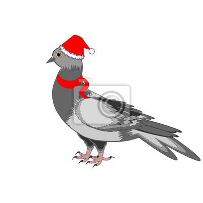 A Christmas Taube auf einem weißen Hintergrund
