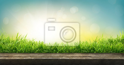 Bild A natural spring garden background of fresh green grass with a bright blue sunny sky with a wooden table to place cut out products on.