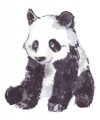 Bild Abbildungzeichnung eines Pandas
