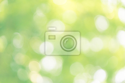 Bild abstract blur green color for background,blurred and defocused effect spring concept for design