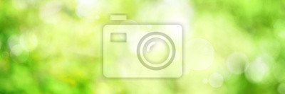 Bild Abstract green spring background