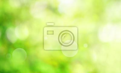 Bild Abstract green spring scenery