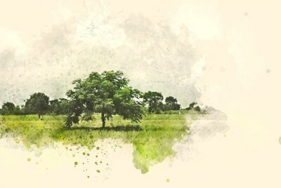 Bild Abstract tree and field landscape on watercolor illustration painting background.