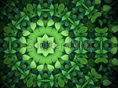 Bild Abstrakter Grünhintergrund, Herz geformtes Grün verlässt mit Kaleidoskopeffekt