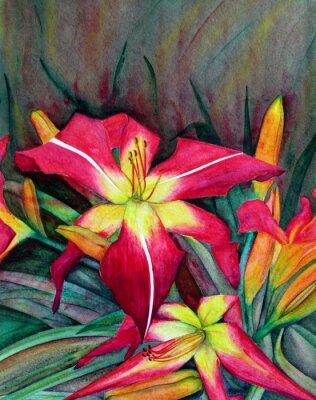 Bild Acrylabbildungen der hellen Blumen. Blumen Taglilien.