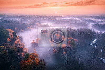 Aerial view of foggy forest at colorful sunrise in autumn. Amazing landscape with colorful trees in fog, river, field and red sky with sun in the morning. Fall colors. Fairy scenery. Top view. Nature