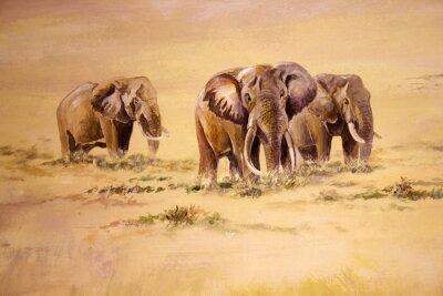 Bild Afrikanischer Elefant, Südafrika