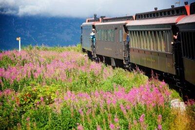 Bild Alaskische Züge