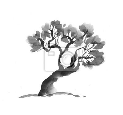 Alte Baum Hand In Schwarz Und Weiß Gezeichnet Tinte Abbildung
