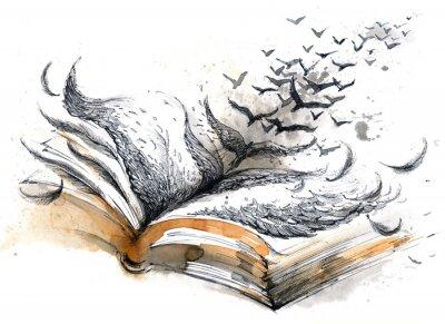 Bild alte Buch