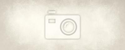 Bild Alte weiße Papier Hintergrund, off white oder beige Farbe mit schwachen Vintage Marmor Textur
