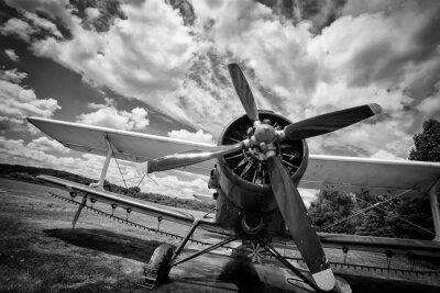 Bild Altes Flugzeug auf Feld in schwarz und weiß