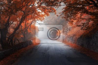Amazing Herbst roten Wald mit Straße im Nebel. Herbst Bäume mit rotem Laub. Bunte Landschaft mit Wald, Straße, orange und rote Blätter und Nebel. Reise. Natur Hintergrund. Magischer Wald. Märchen