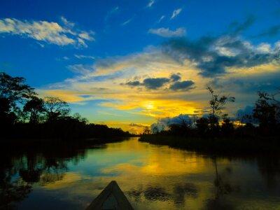 Bild Amazon river