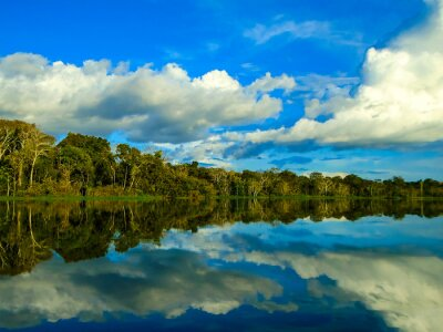 Bild Amazonas