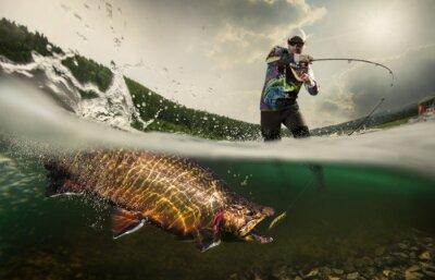 Bild Angeln. Fischer und Forellen, Unterwasser-Ansicht