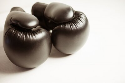 Bild Ansicht der Boxhandschuhe