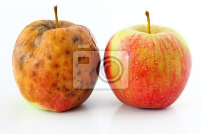 Apfel verwöhnt auf weißem Hintergrund Gesunde und faule Äpfel