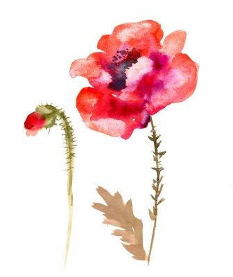 Bild Aquarell Blume Mohn
