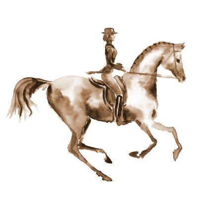 Bild Aquarell-Fahrer und Dressurpferd auf weiß. Reitsport. Handanstrichabbildung equine Hintergrund.
