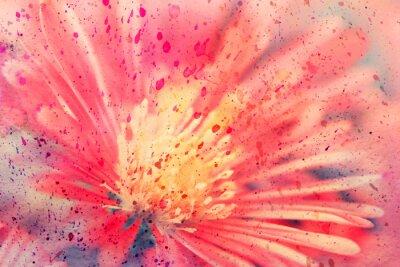 Bild Aquarell-Kunstwerk mit roter Aster hautnah