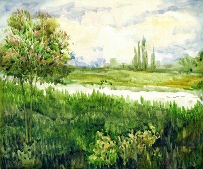 Bild Aquarell Landschaft. Junger Baum in der Wiese nahe Fluss