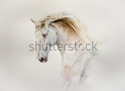 Bild Aquarell Lusitano Pferd Porträt