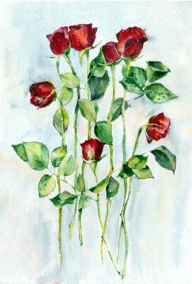 Bild Aquarellmalerei. Rote Rosen mit grünen Blättern auf einem langen Stielen.