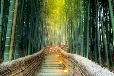 Bild Arashiyama Bambuswald