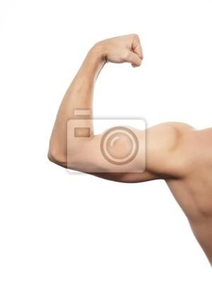 Arm muskeln leinwandbilder • bilder Lage, wuchten, schwach   myloview.de