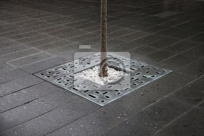 Arrangiert Stadt Baum