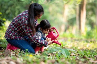 Bild Asian family mom and kid daughter plant sapling tree outdoors in nature spring for reduce global warming growth feature and take care nature earth. People kid girl in forest background