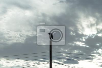 Asian Openbill auf lokalen Hochspannungspol nach dem Regentag