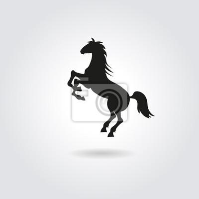 Bild Aufbäumen Anmutigen Schwarzen Silhouette Pferd