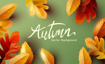 Bild Autumn thanksgiving  background design with falling autumn leaves and room for text. Vector illustration