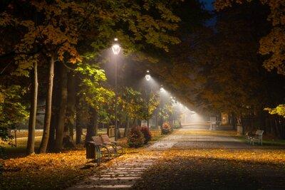 Bild Autumnal alley in the park at night in Konstancin Jeziorna, Mazowieckie, Poland