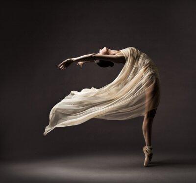 Bild Ballerina Dancing with Silk Fabric, Modern Ballet Dancer in Fluttering Waving Cloth, Pointe Shoes, Gray Background
