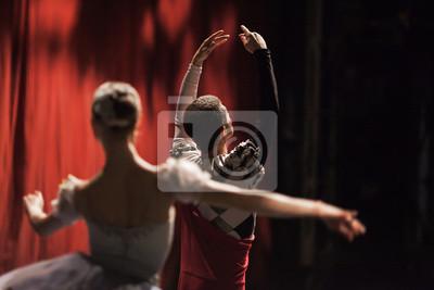 Ballet Schwan See. Ballerinas in der Bewegung.