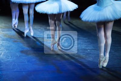 Ballet Schwan See. Ballett-Anweisung. Ballerinas in der Bewegung.