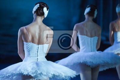 Ballet Schwan See. Ballettaussage. Ballerinas in der Bewegung. Füße von Ballerinen close up. Starke Frauen.