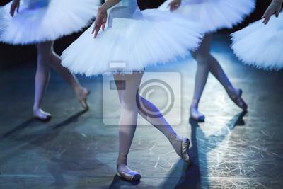Ballet Schwan See. Erklärung. Ballerinas in der Bewegung.