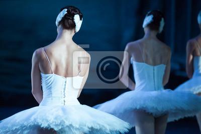 Ballett, Schönheit, dramatische Kunst Konzept. bewegliche und absolut identische Figuren von weiblichen Ballett-Tänzern tragen Outfit für die Durchführung von Schwanen-See stehen zurück