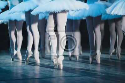 Ballett Schwan See. Ballett-Anweisung. Ballerinen in der Bewegung.