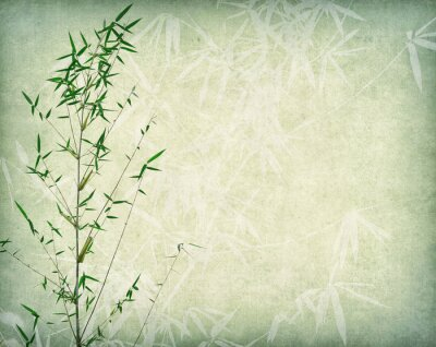 Bild bamboo on old paper background