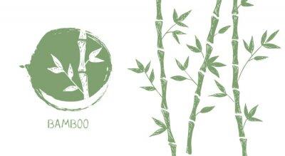 Bild Bamboo tree. Hand drawn style. Vector illustrations.