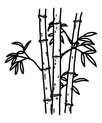 Bambus Cartoon Vektor Und Illustration Schwarz Und Weiss Hand